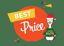 winducks christmas lights affordable options